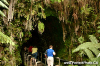 Thurston Lava Tube, Nahuku, Hilo area, Big Island, Hawaii, HI, USA